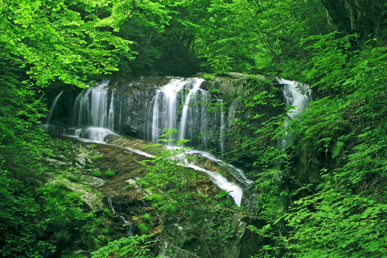 丹波山村(無名の滝)