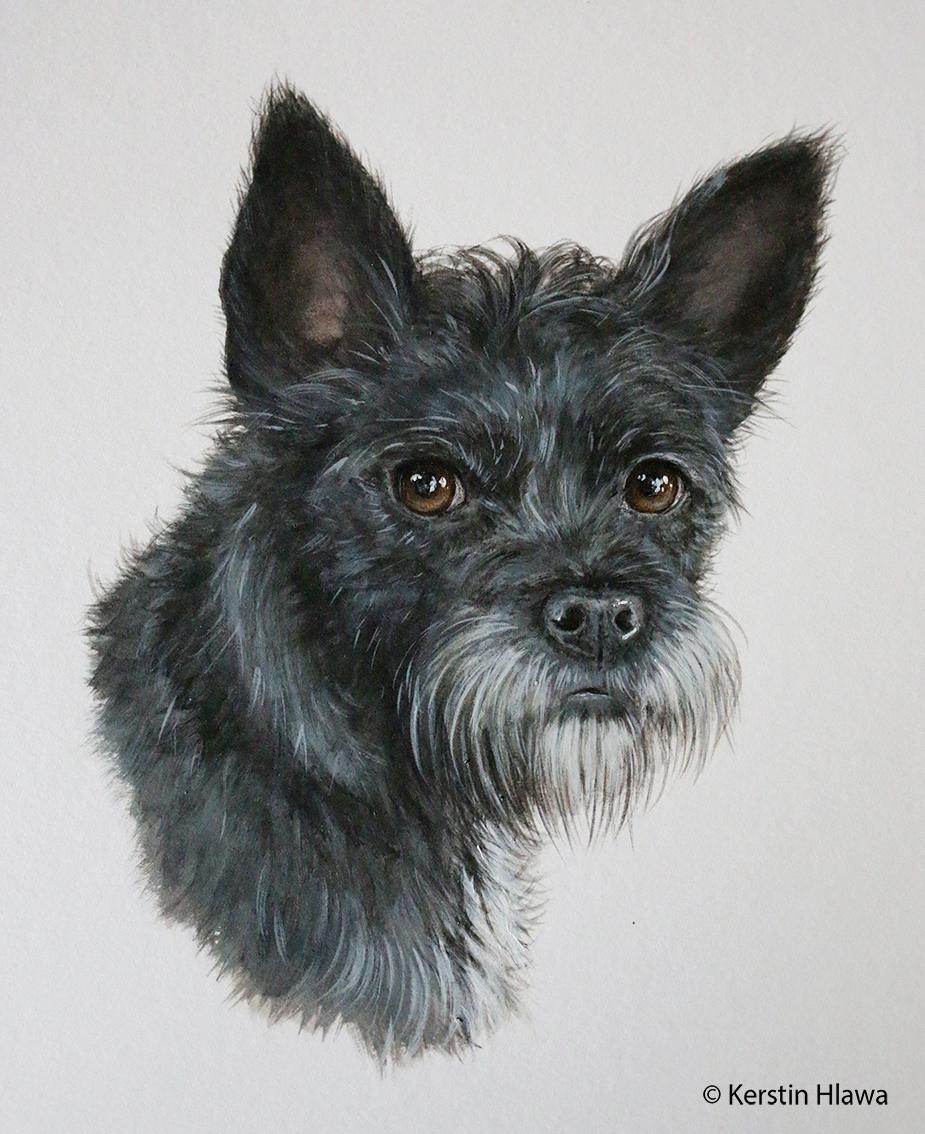 "Hund ""Schoko"", Acryl, A3"