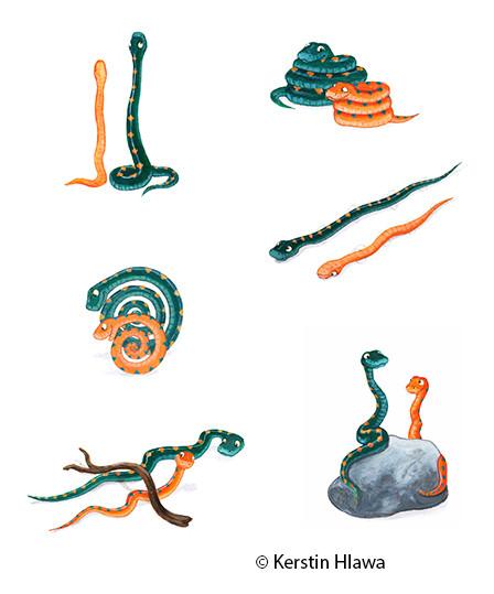 Vignetten für Schubi- Verlag, 2012, Acryl