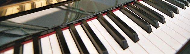 Der routinierte Klavierstimmer für Ihr Instrumen - Ewald Vögele