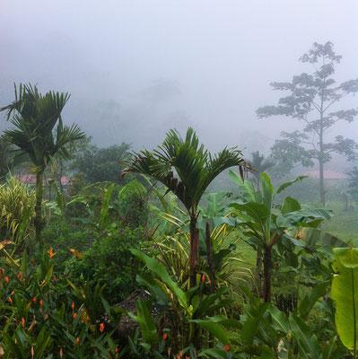 Costarica Zentrale für Tourismus