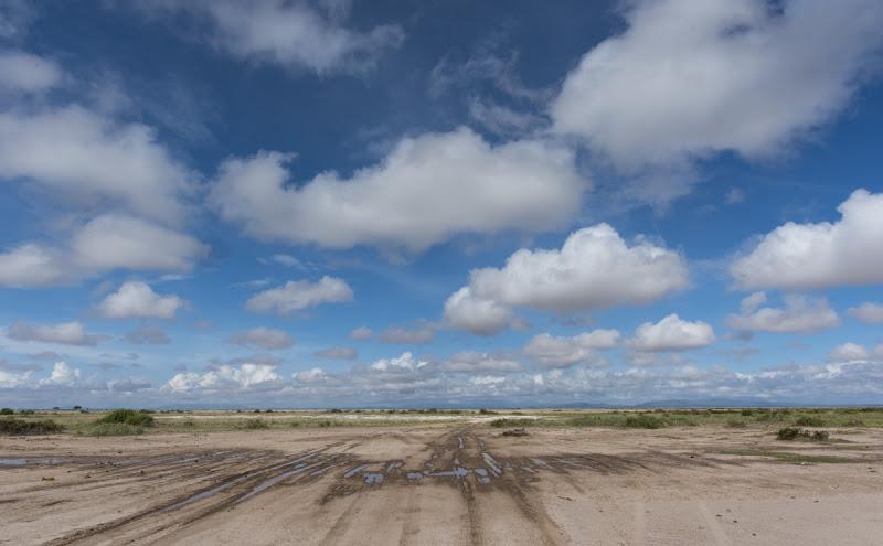 Bei dieser Aufnahme befinde ich mich in Bauchlage in Amboseli Nationalpark Kenia.  Also man darf auch einmal schmutzig dabei werden, aber wir erzielen genau dieses Ziel mit Bewegung eine andere Perspektive zu erreichen