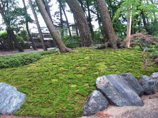 念仏寺の庭石1
