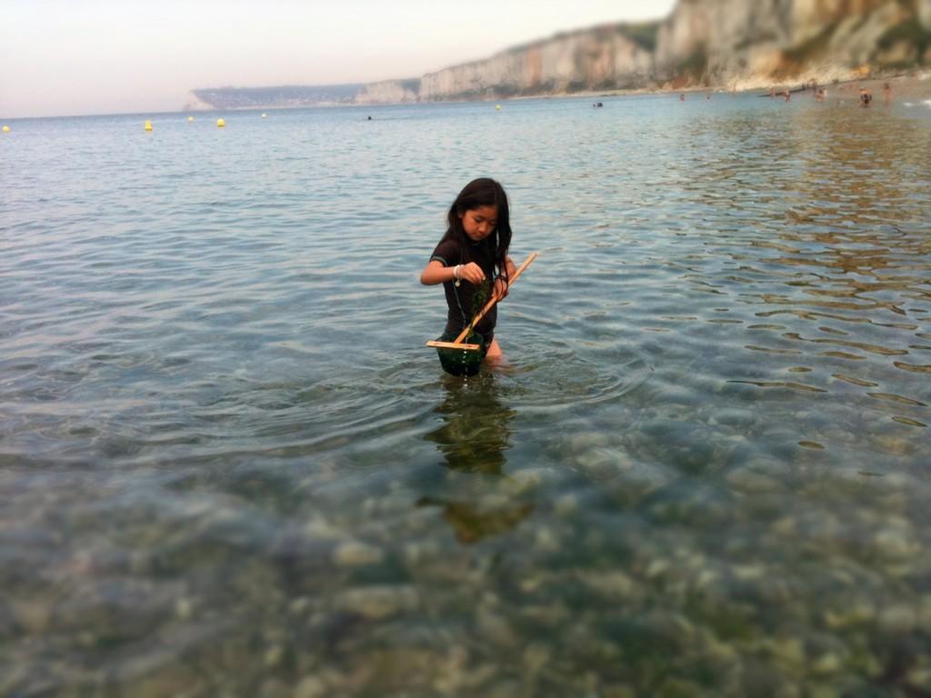 夢中になって、海に入って本格的にわかめを集めました。