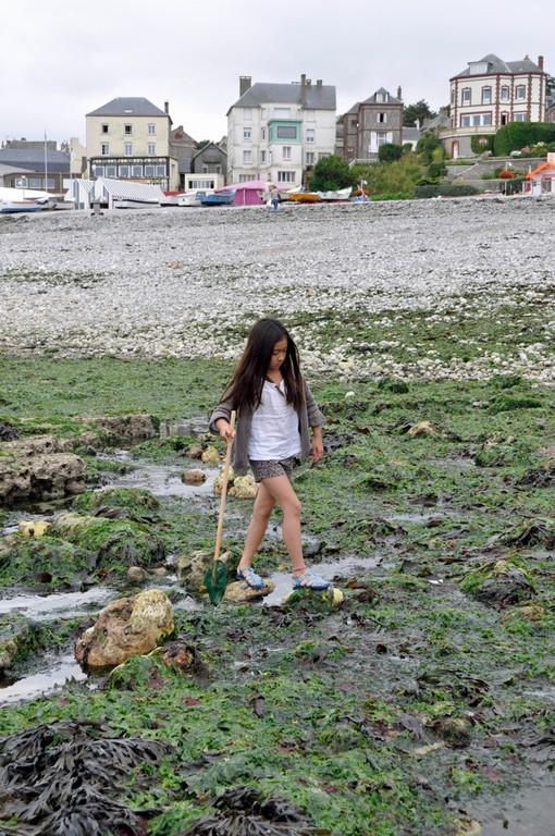 海藻の上は滑るので歩くのが大変だけれど、すぐに上手に歩けるようになりました。
