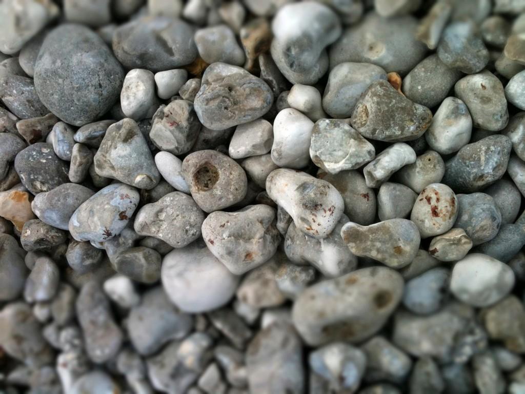 浜の端から端を歩いてお気に入りの石を拾います。