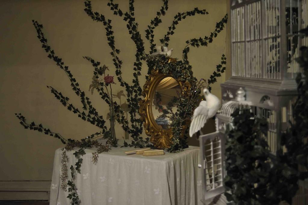 オーロラ姫が眠っている間の何年もの間、鳥たちもそのときのまま眠っています。でも、バラだけはどんどん伸びて部屋を覆い始めました。