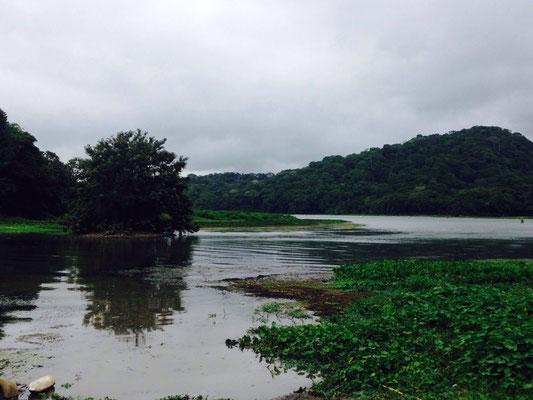La beauté du canal de Panama