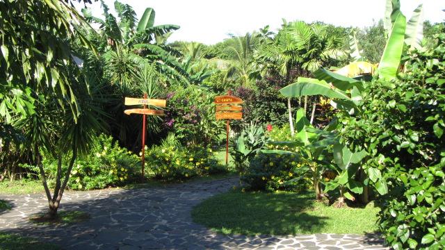 Bienvenue à l'hotel Cabanas los Colibris