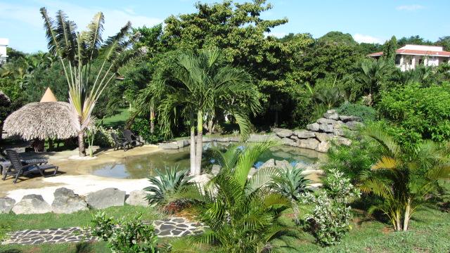 Hostal Colibris Region Coclé Panama