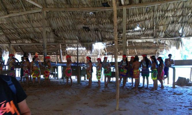 Danses traditionnelles de la communauté indigène des Emberas