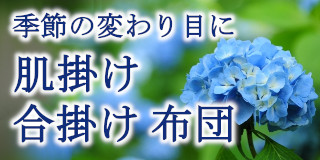 夏ギフト寝装プラザ福田のお中元