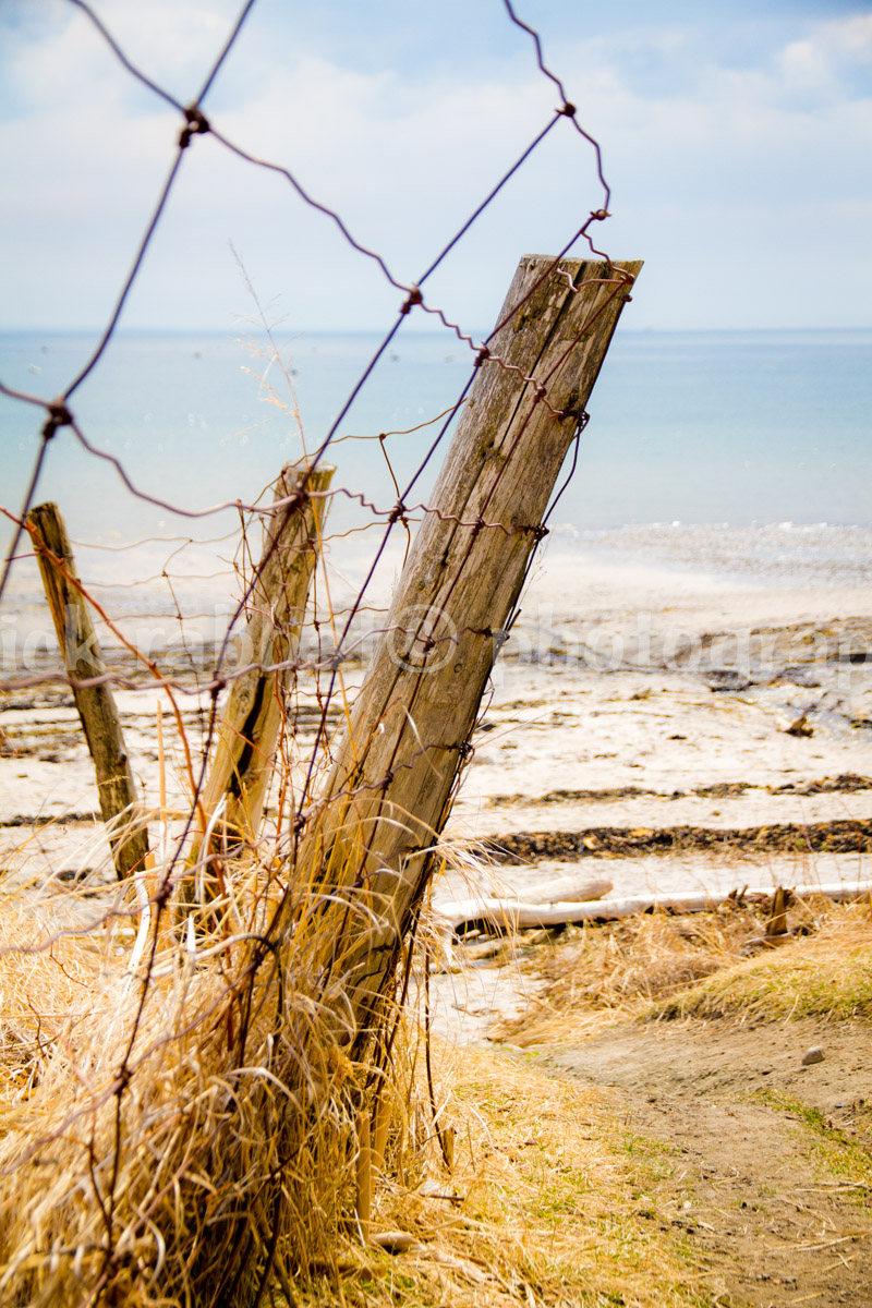 Photographie du bord du fleuve, réalisée par PatrickRabbatPhotos