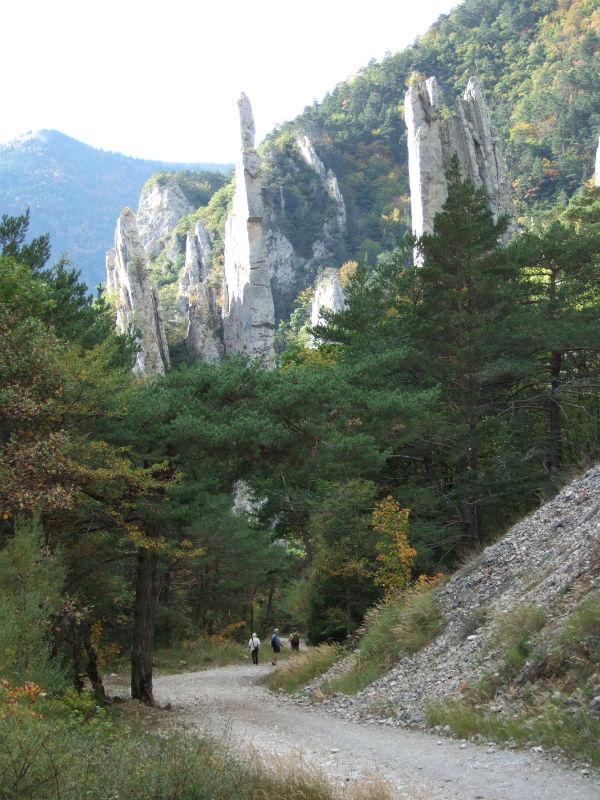 Sucettes de Borne kalksteenrotsen
