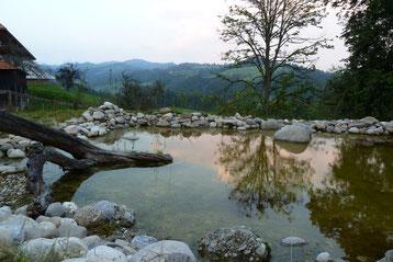 Teich auf Vorder Stoss