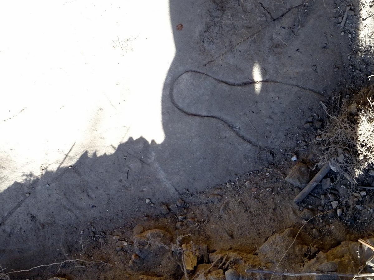 Die eingeritzten Kegel,  Bild: 2