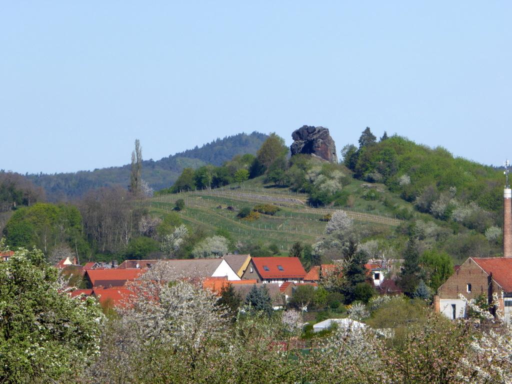 Der Blick zum Königstein und Seeberg!
