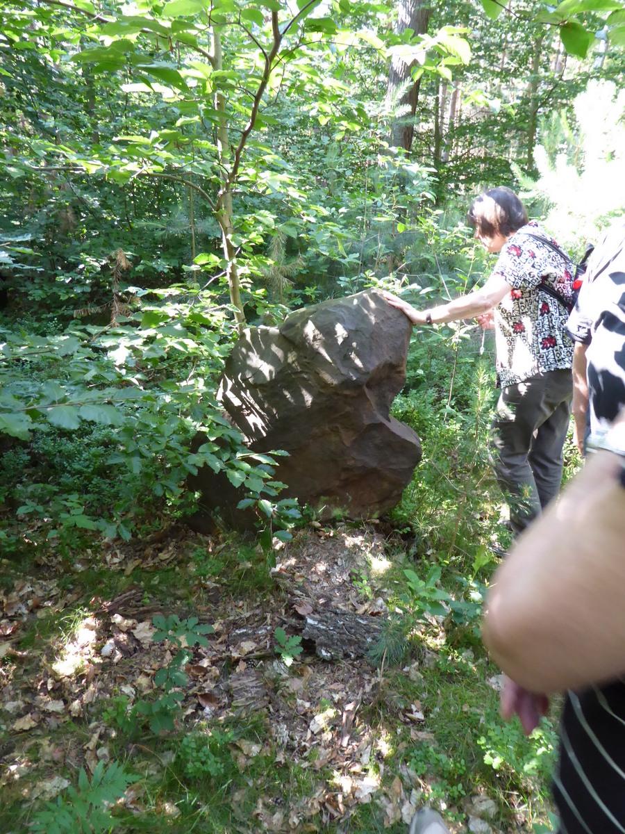 weiterer Reststein vom Steinkreis