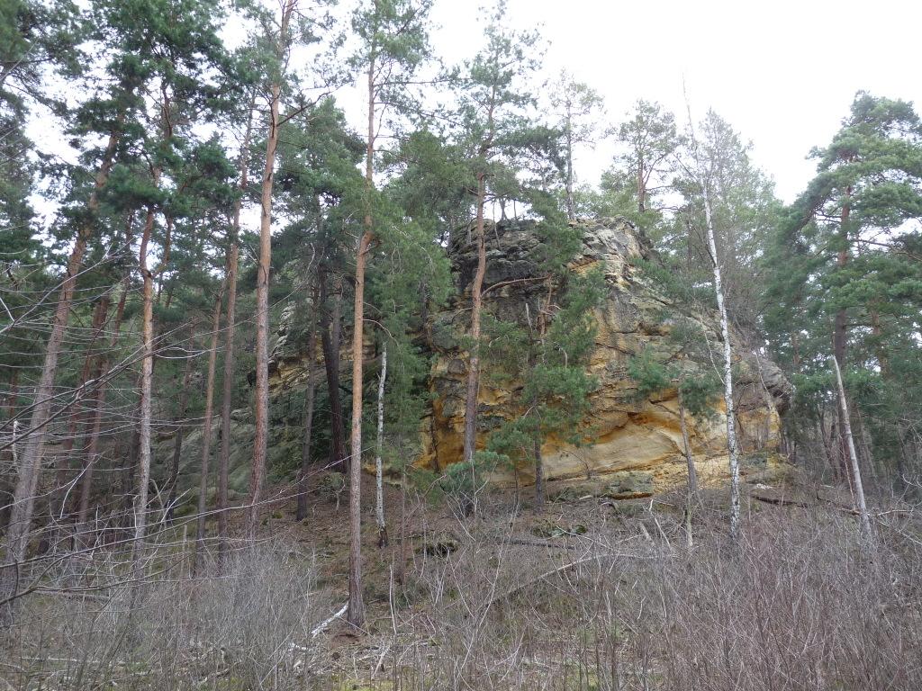 Der Tyrstein an der Waldkante