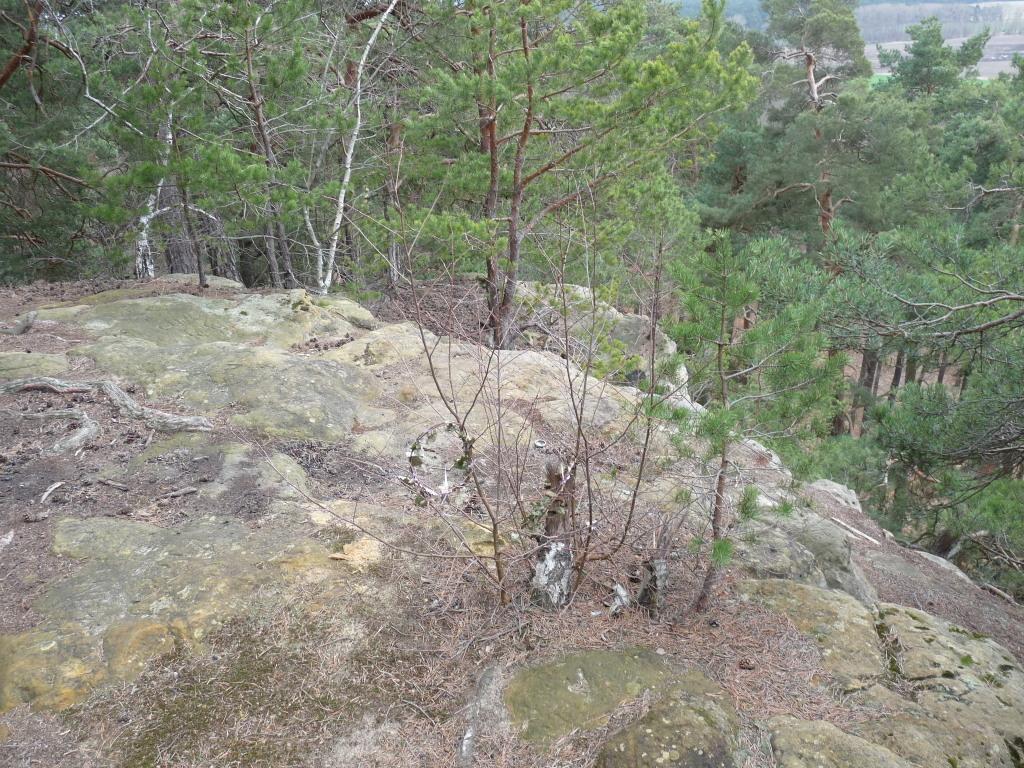 Die Felskante mit den Terrassen gen Süden
