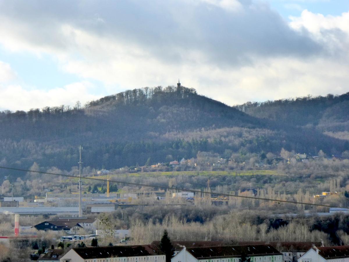 Der Eichberg über der Stadt, von hohen Laubbäumen umgeben
