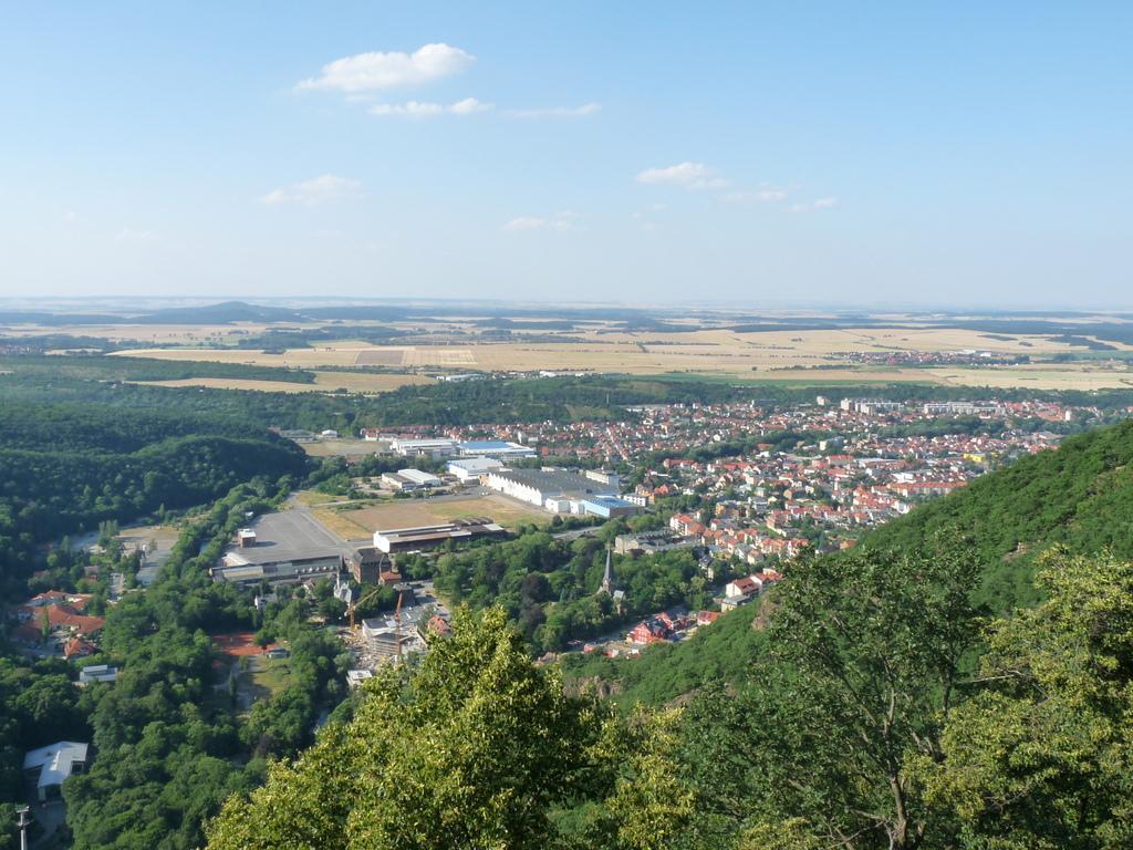 Panorama vom Hexentanzplatz