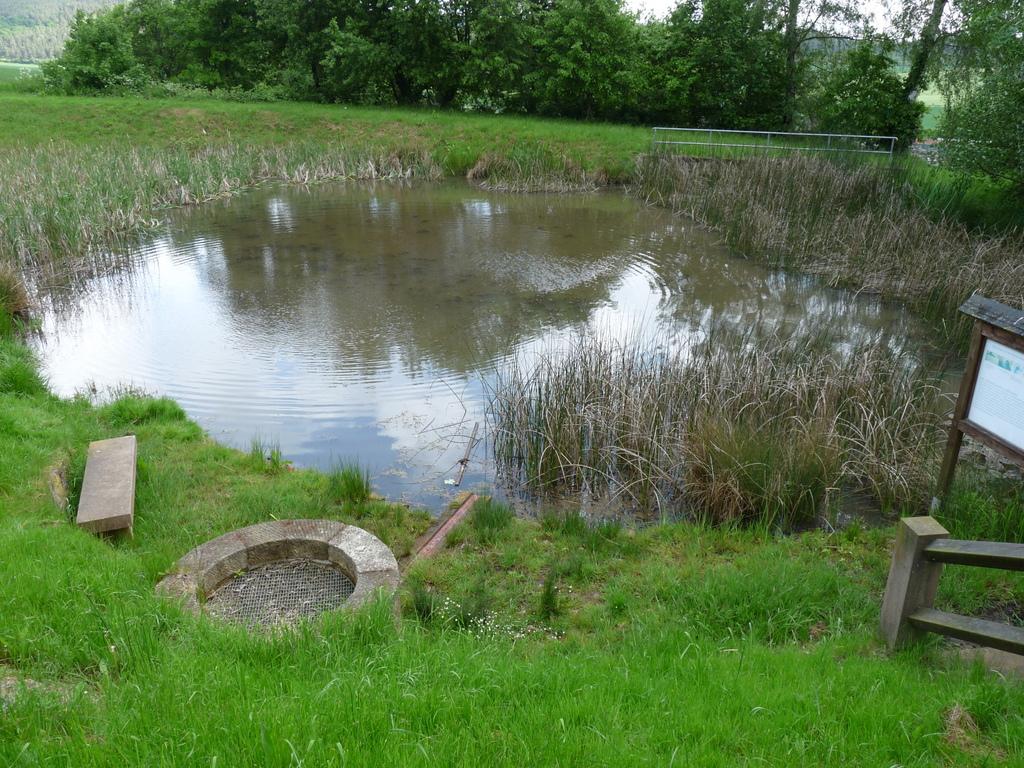 Der kleine See an der Quelle