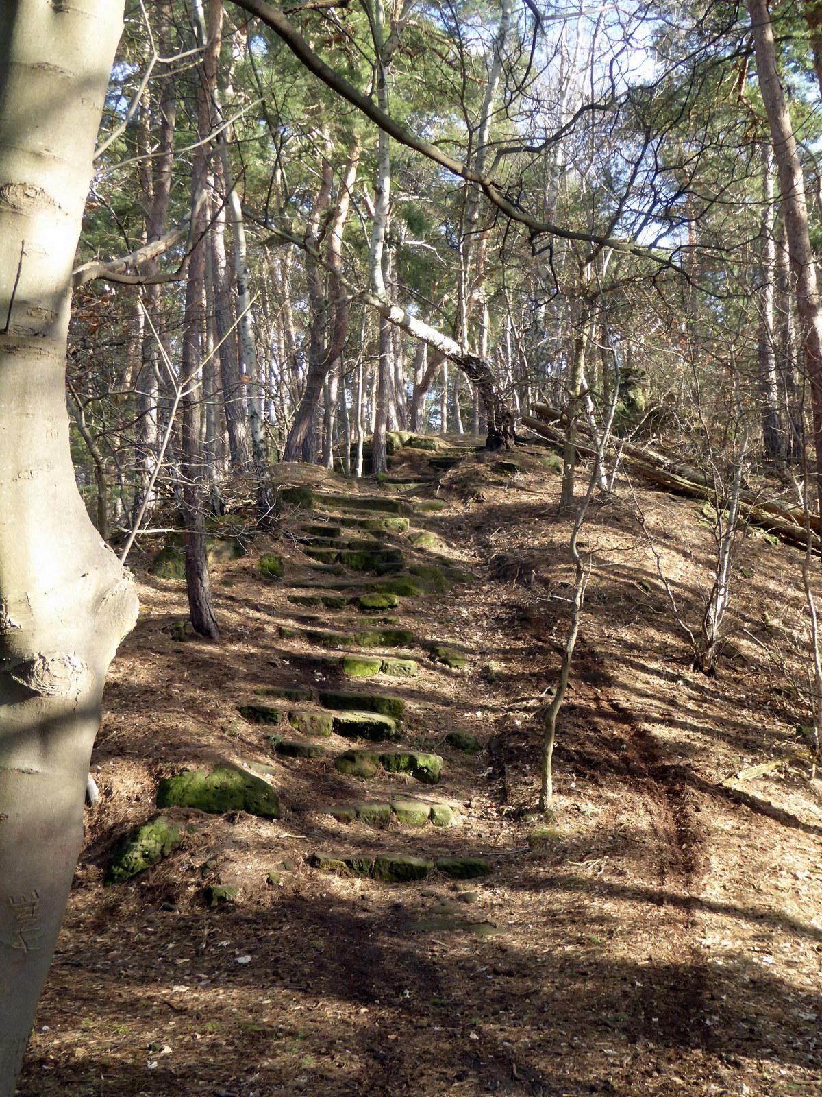 Der Kammweg zur Fuchsklippe