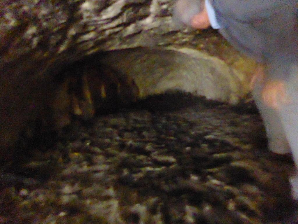 Blick in eine Höhle