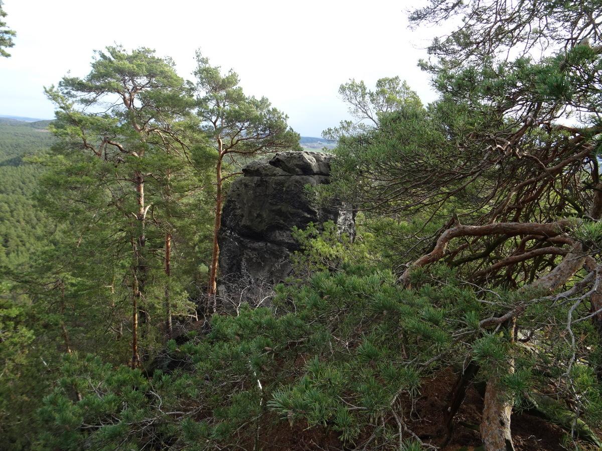 Die kleine Roßtrappe ist oben auf diesem Felsen