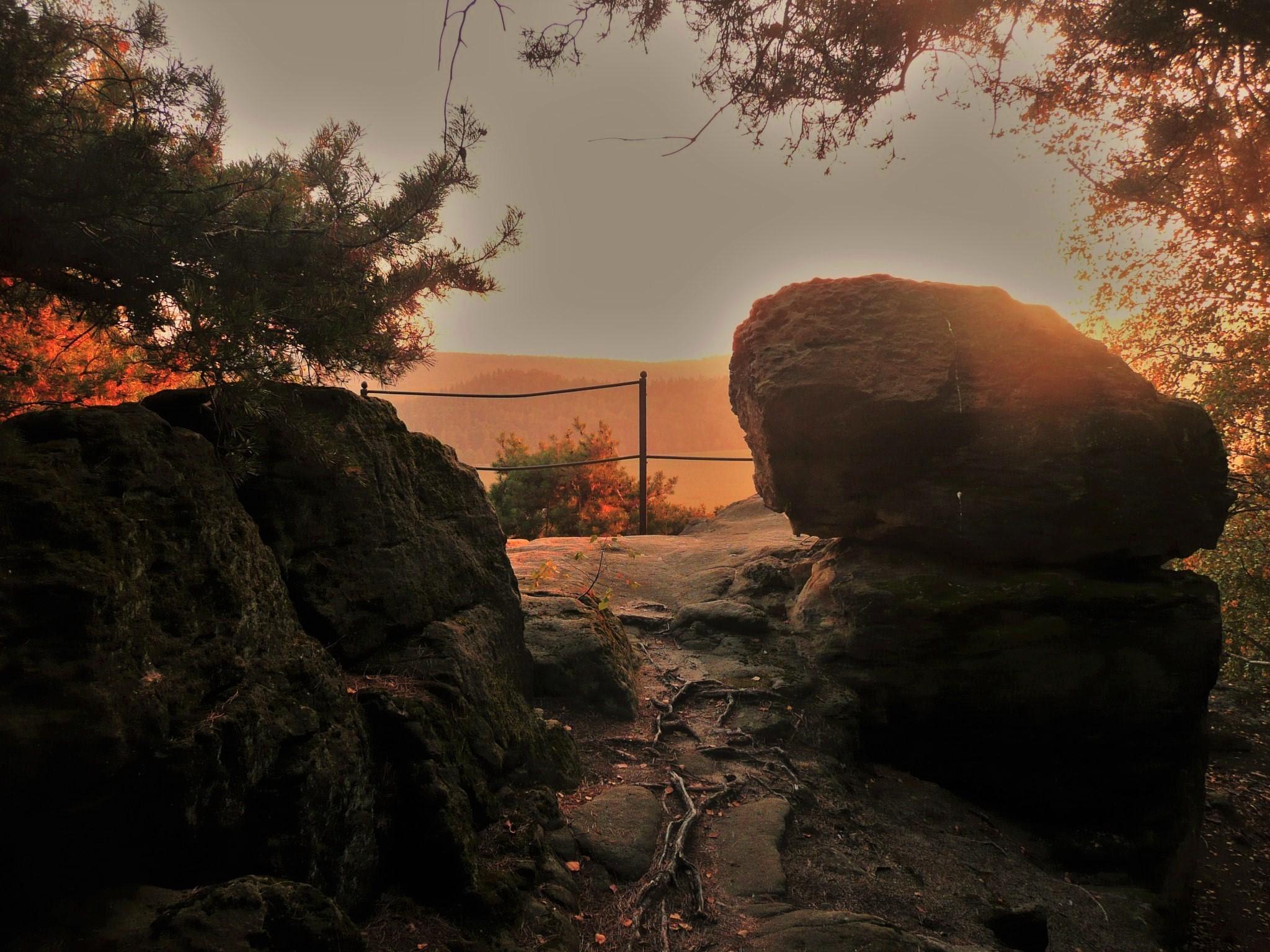 Mystisches Sonnenlicht an der Fuchsklippe (Foto 1 H. Zeitzmann)
