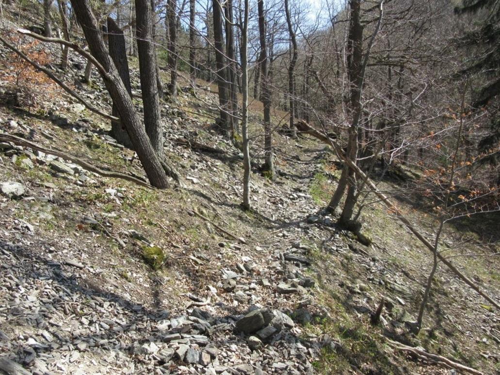 Ein schlecht erkennbarer und schwieriger Fußweg führt in das Tal