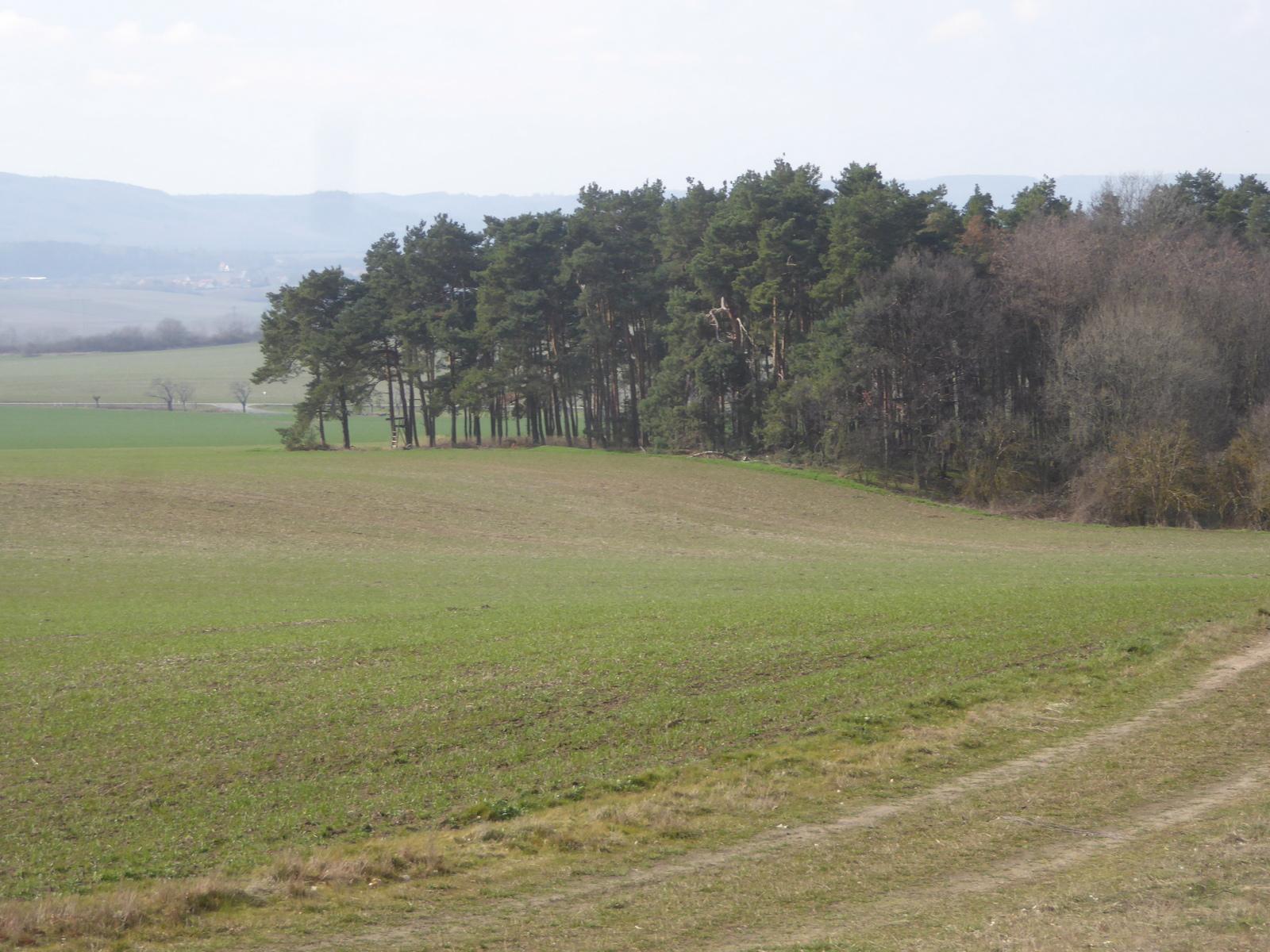 Das seitliche Hügelgrab