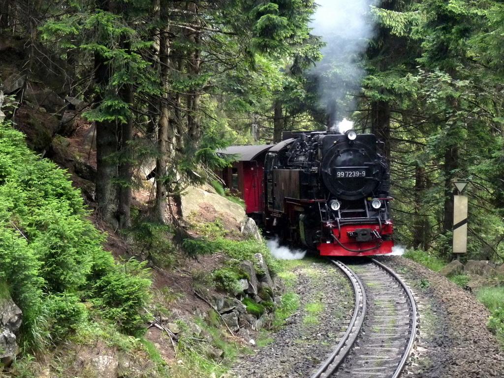Eventuell per Brockenbahn auf den Berg?