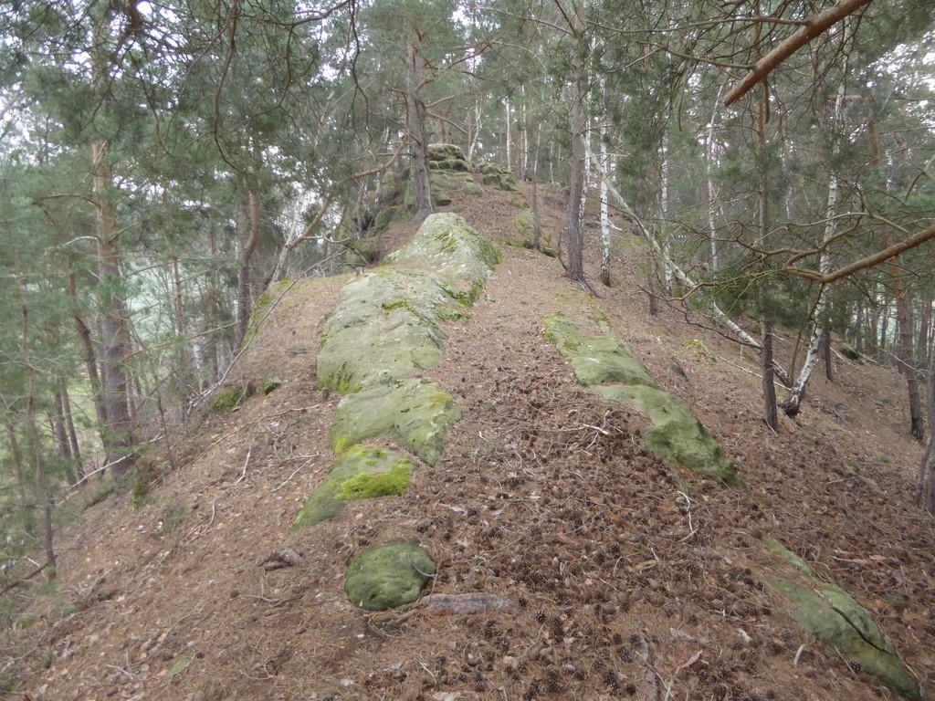 Der Felsrücken mit den Stufen am Ende