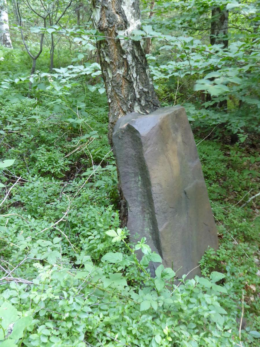 weiter im Wald findet man die größeren Steine