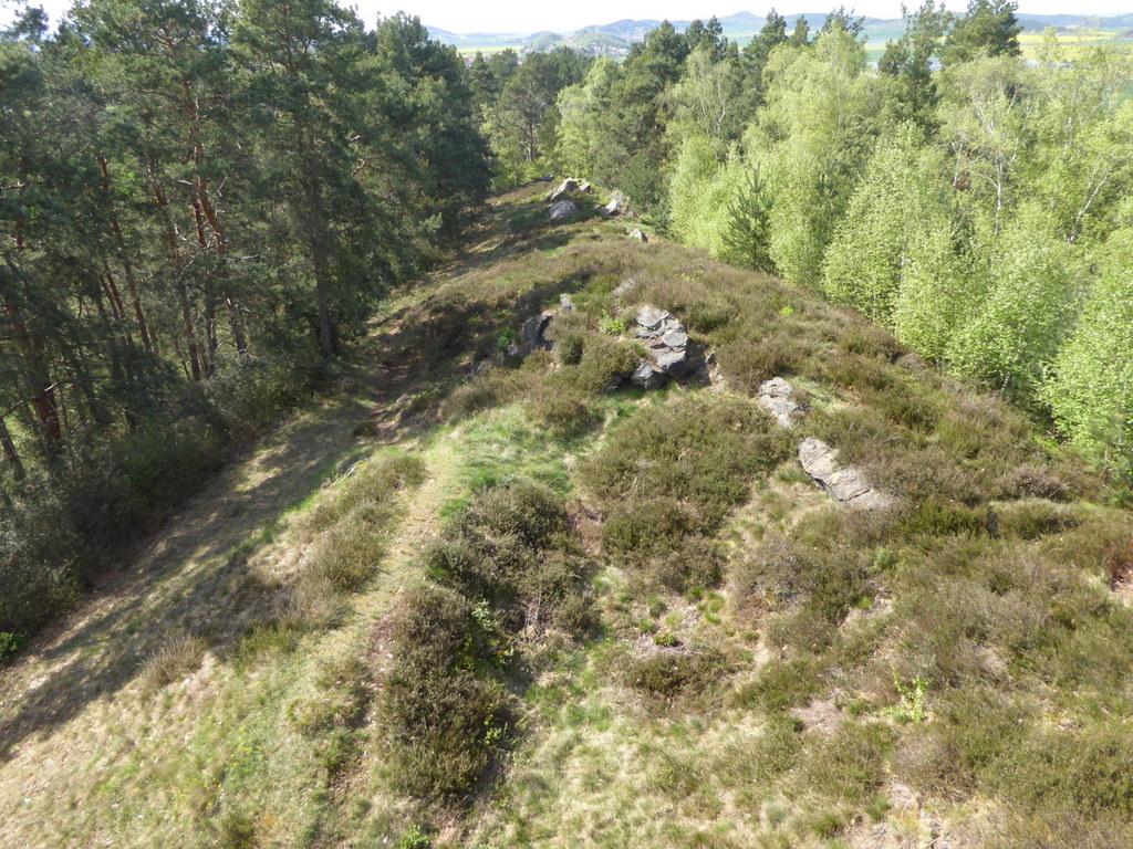 Der Kammweg auf dem Langenberg