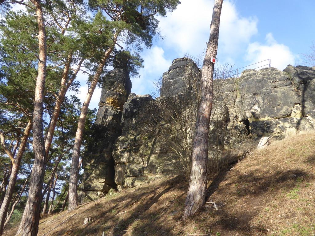 Die Felsengruppe im Wald