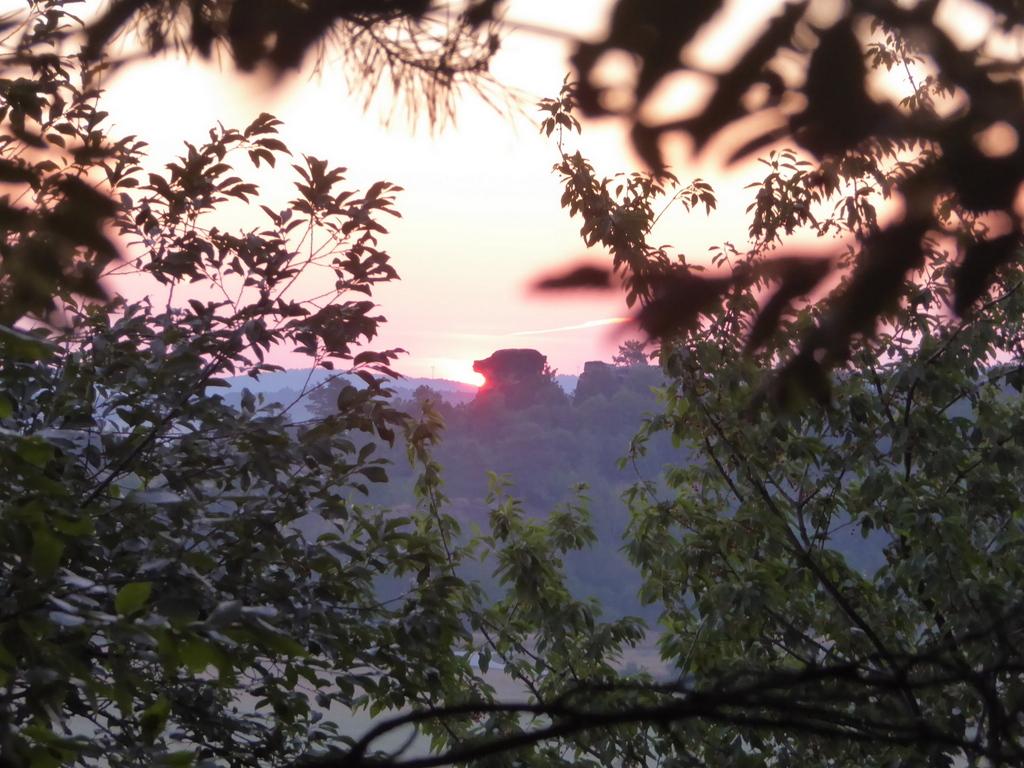 Sonnenaufgang zur Sommer-Sonnenwende durch das Laub