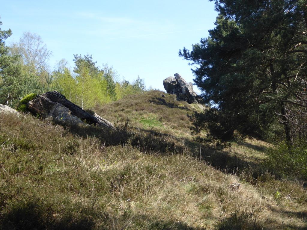 Viele kleine Felsen