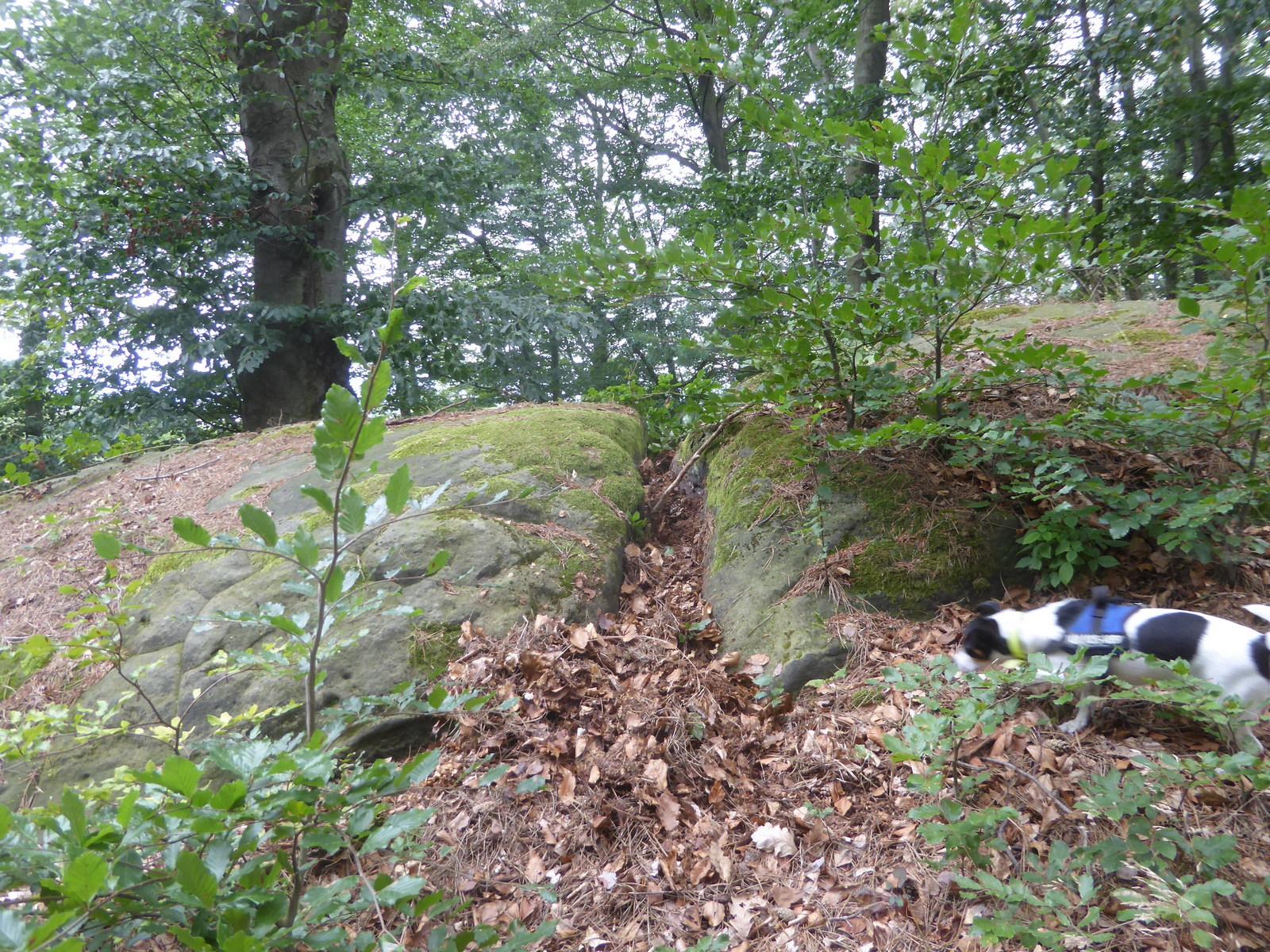Der gespaltene Stein über dem Sonnental
