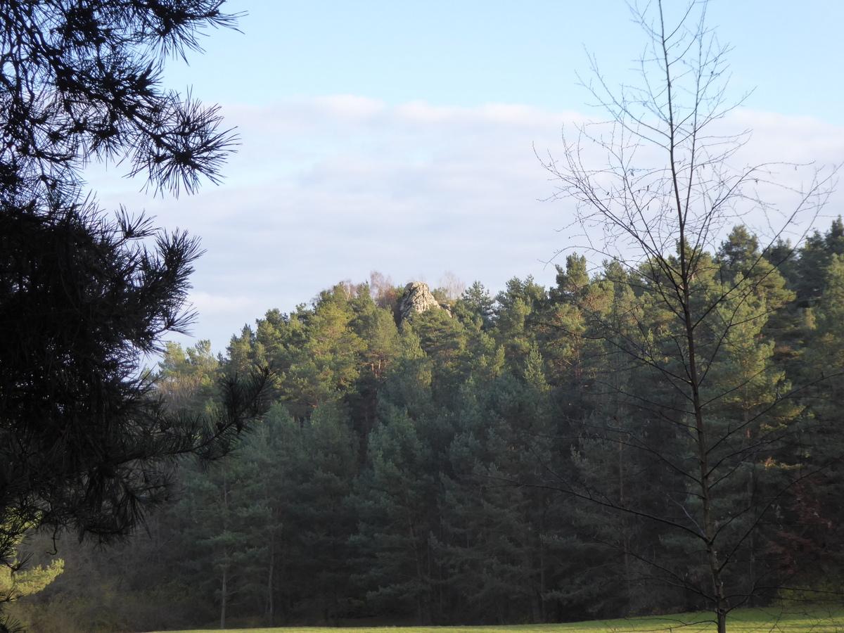 Die kleine Kuksburg zwischen den Bäumen versteckt