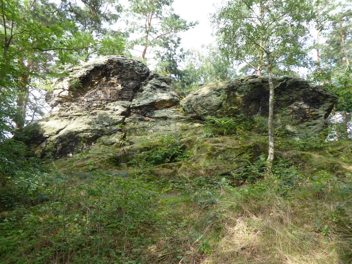 Die kaum 5 m hohe Vogelklippe, der Kopf besteht aus sehr festem Sandstein