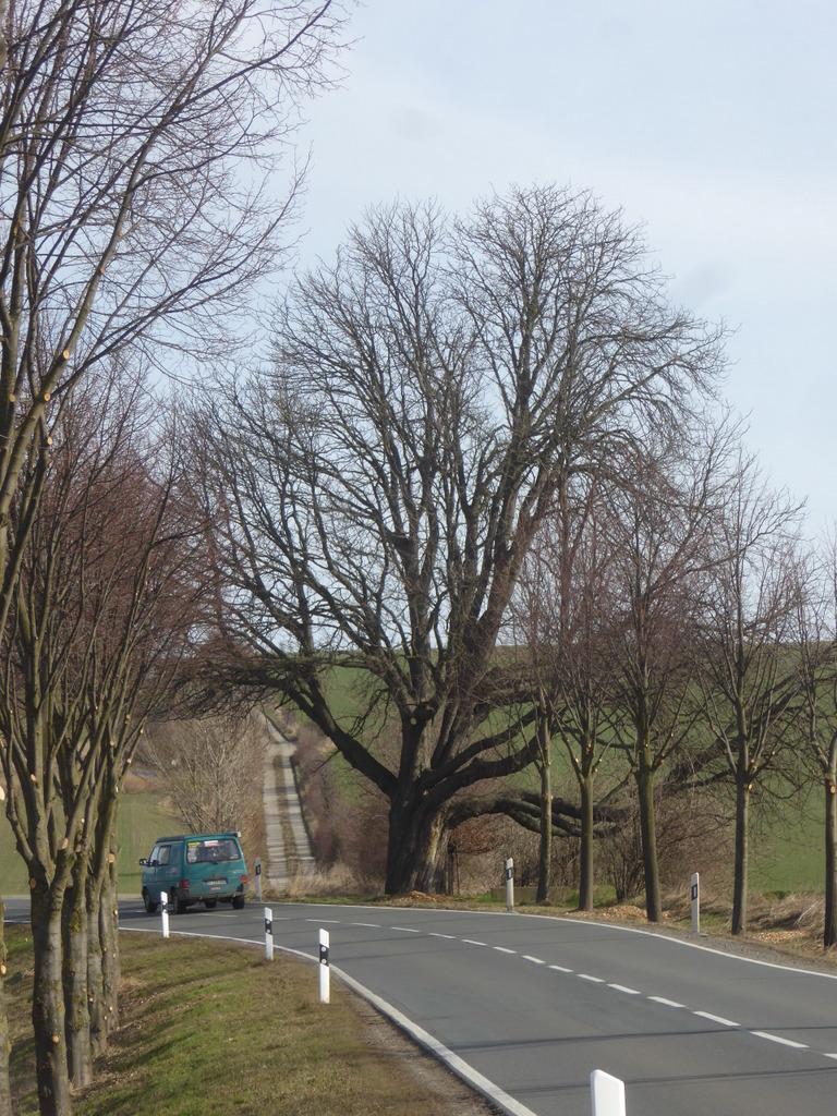 Die Auffahrt zum Markberg auf dem abbiegenden Feldweg