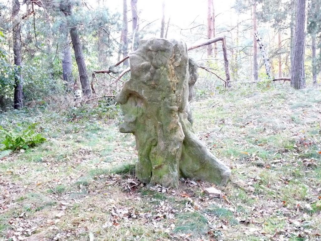 Der Schösserkopfstein (Gesichtsstein)