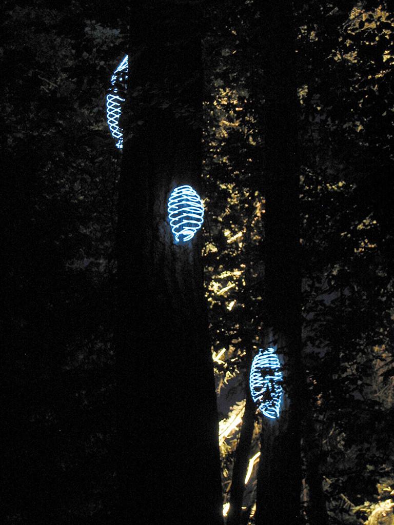 """""""Songe et lumières"""" en collaboration avec Atelier Emergence"""