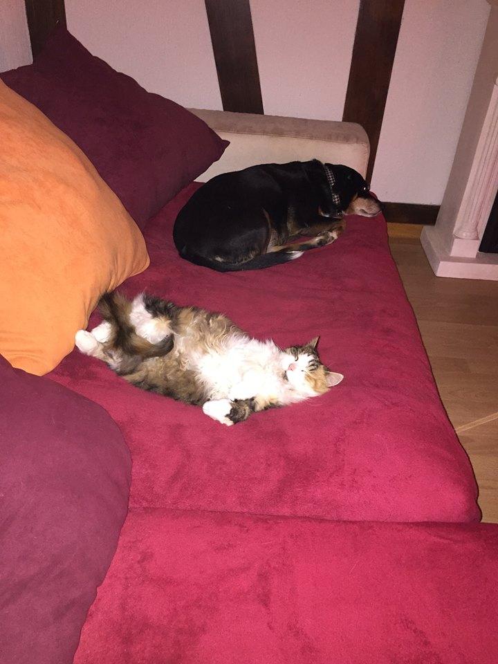 Sissy + Nora