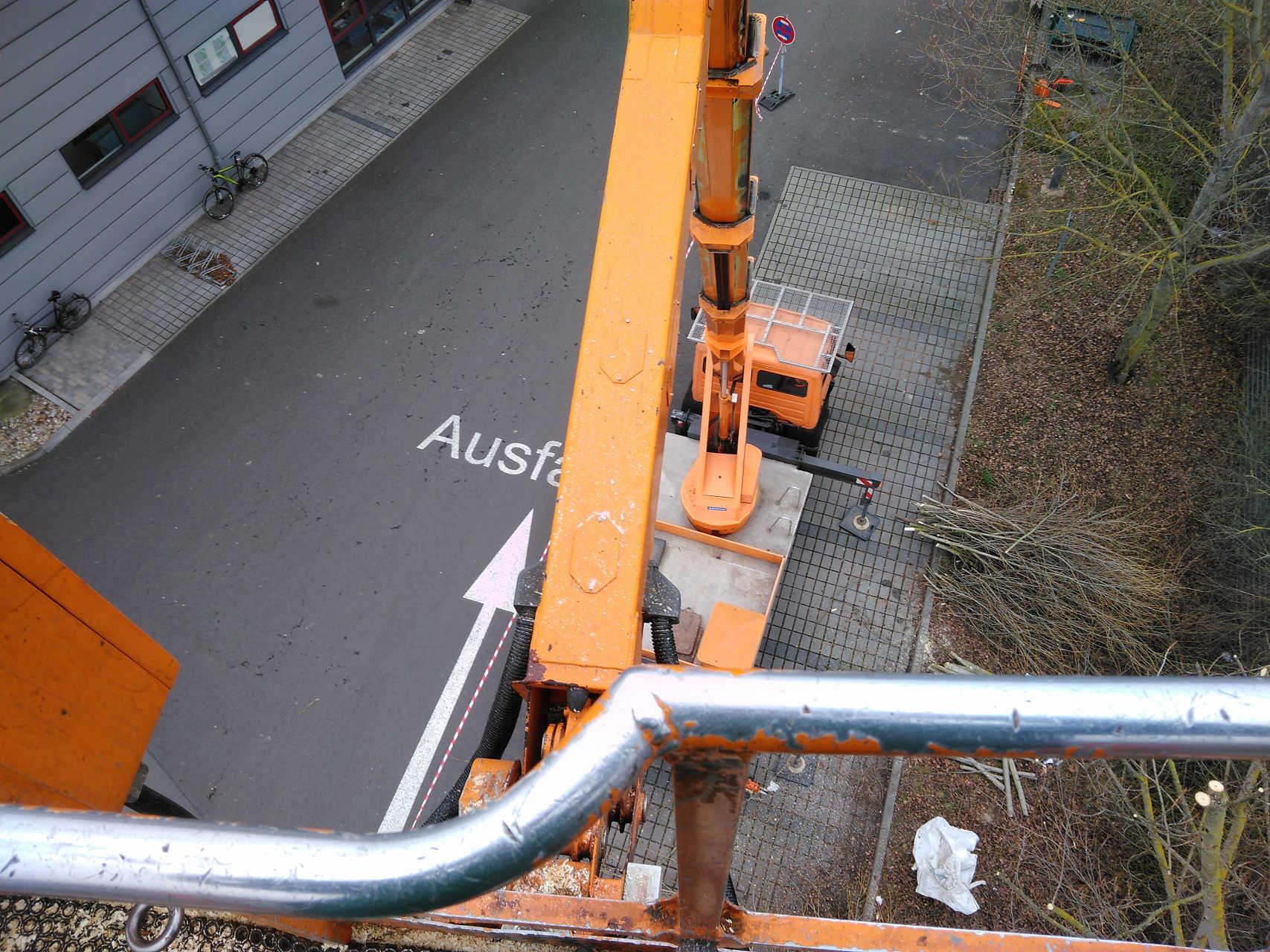 Baumfällung mit Hubsteiger von oben