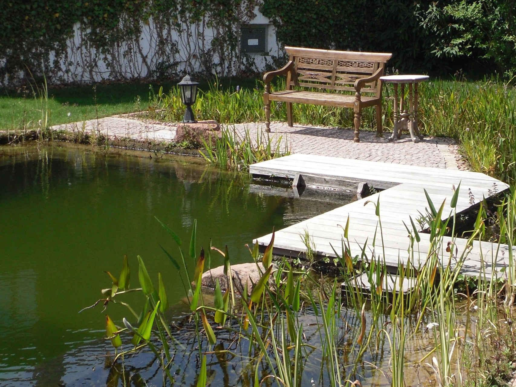 Schwimmteich mit Holzsteg