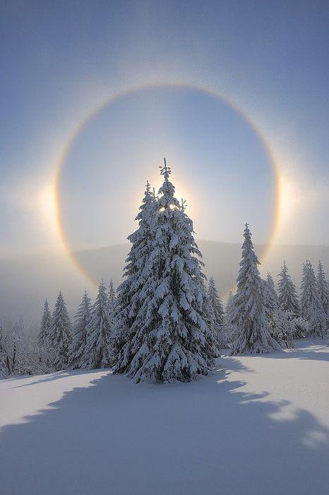 21.12. - Wintersonnwende - nun ist es wieder soweit - die Rauhnachtszeit beginnt